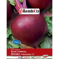 Burak ćwikłowy Betako mieszaniec F1 - 10g - Plantico