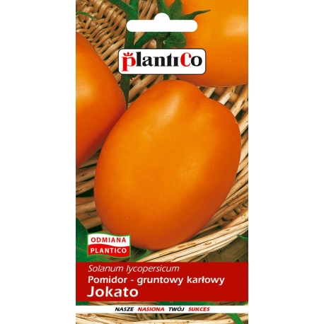 Nasiona pomidora karłowego Jokato