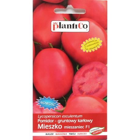 Nasiona pomidora karłowego Mieszko