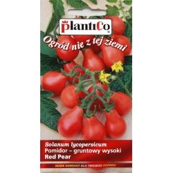 Pomidor - gruntowy wysoki Red Pear - 0,2g - Plantico