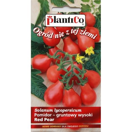 Nasiona pomidora wysokiego Red Pear
