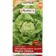Nasiona sałaty głowiastej masłowej Regina Zielona