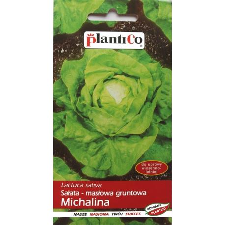 Nasiona sałaty masłowej Michalina