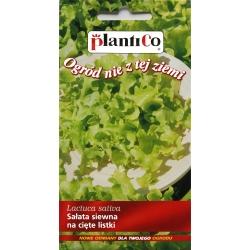 Nasiona sałaty na cięte listki
