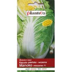 Kapusta pekińska - wczesna Manoko mieszaniec F1 - 0,15g - Plantico