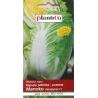 Nasiona kaputy pekińskiej Manoko