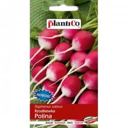 Rzodkiewka Polina - 10g - Plantico