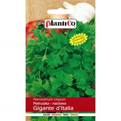 Nasiona pietruszki naciowej Gigante d'Italia