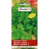 Nasiona pietruszki naciowej Moss Curled 2