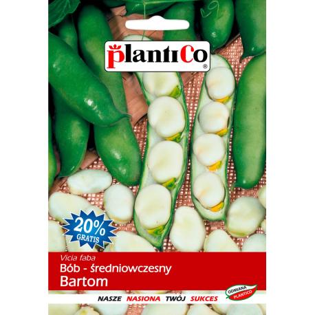 Nasiona bobu średniowczesnego Bartom