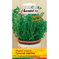 Tymianek właściwy - 0,3g - Plantico