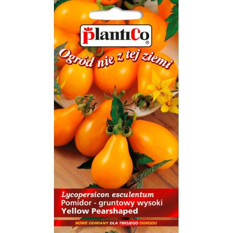 Nasiona pomidora wysokiego Yellow Pearshaped