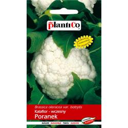 Kalafior - wczesny Poranek - 1g - Plantico