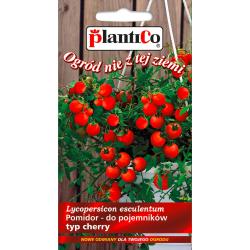 Nasiona pomidora do  wiszących do pojemników cherry