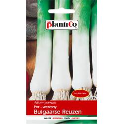 Por - wczesny Bulgaarse Reuzen - 1g - Plantico