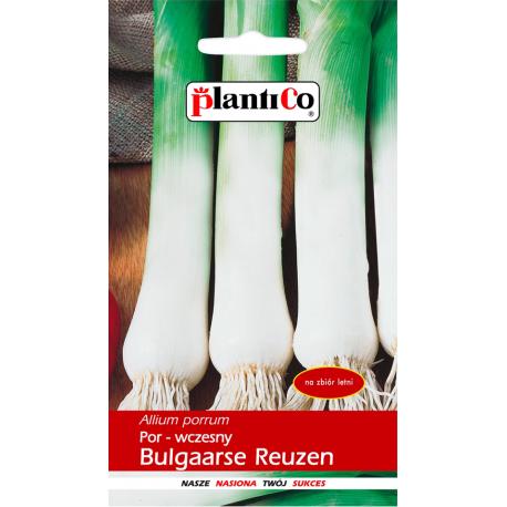 Nasiona pora wczesnego Bulgaarse Reuzen