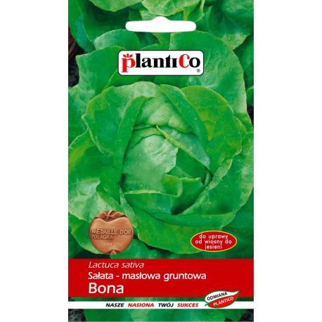 Nasiona sałaty masłowej Bona