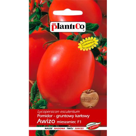 Nasiona pomidora karłowego Awizo