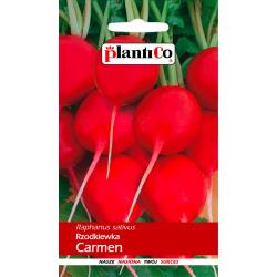 Nasiona rzodkiewki Carmen - 10g - Plantico