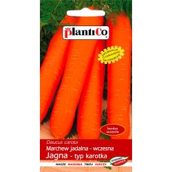 Marchew jadalna - wczesna Jagna - typ karotka - 5g - Plantico