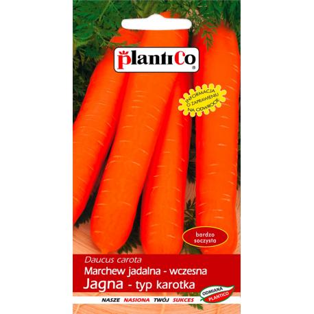 Marchew jadalna - wczesna Jagna - typ karotka - 5g