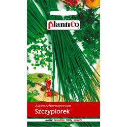 Nasiona szczypiorku